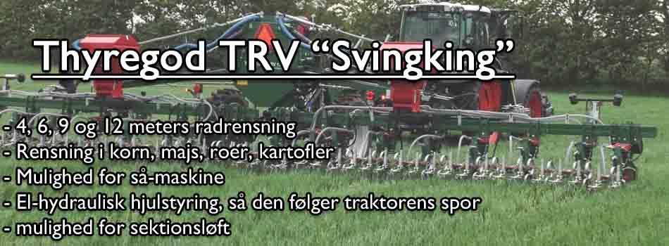 svingking_dk-copy