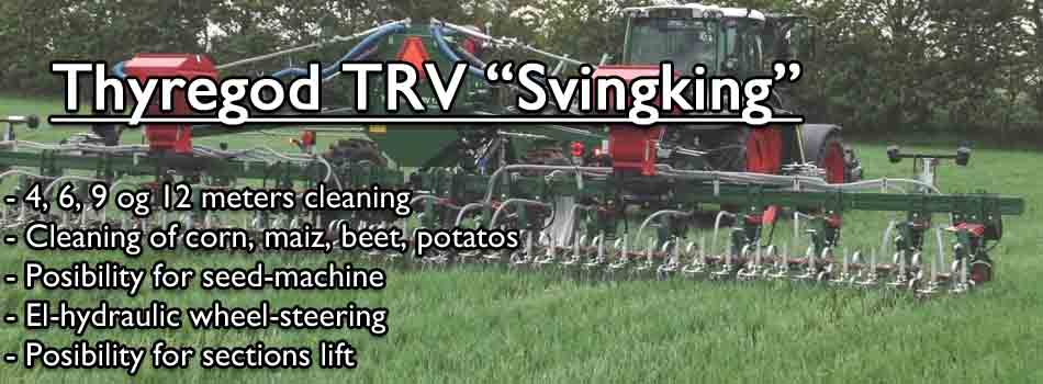 svingking_en-copy